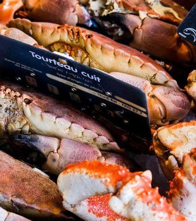 picture Le guide complet des temps de cuisson du tourteau